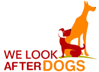We look after dogs